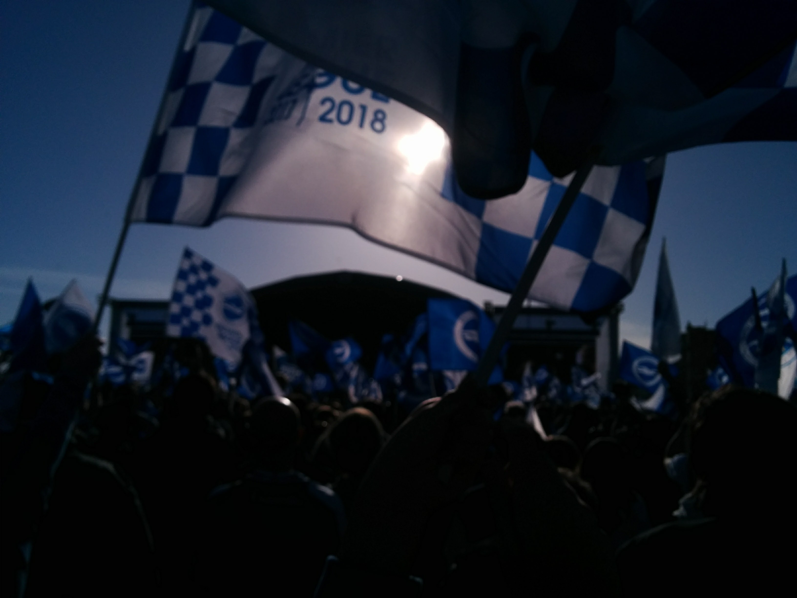 Blue and white flag waving over crowd of people, stage in the distance.