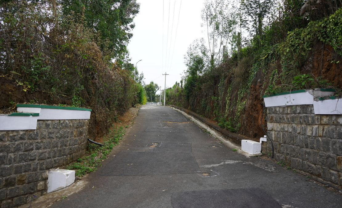 Roads with stone wall retention at Hillsborough