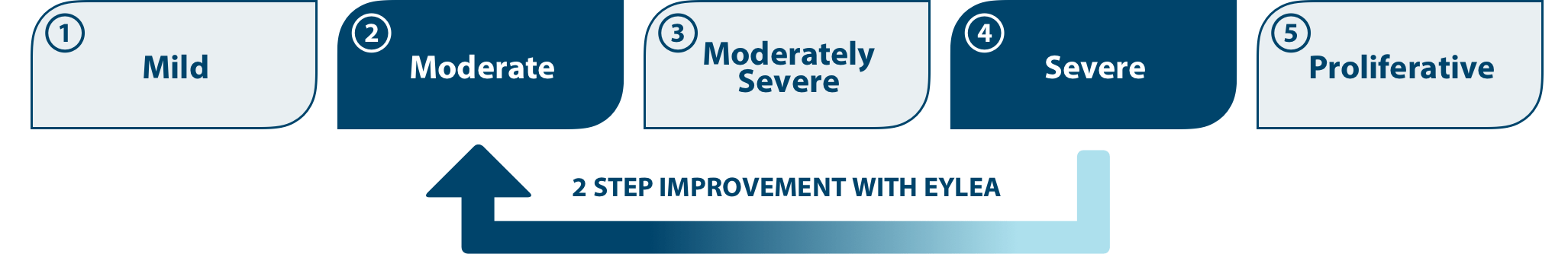 Image demonstrating a 2-step improvement on the Diabetic Retinopathy Severity Scale from Severe DR to Moderate DR.