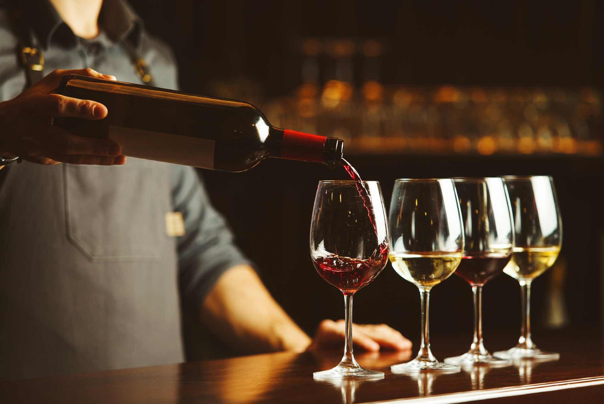 Wine Tasting Petrovac