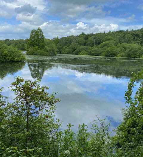 Adel Dam Nature Reserve Lake with reflection of the sky