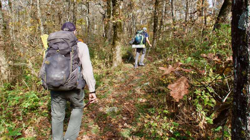 Tengo and JA on the Benton MacKaye Trail