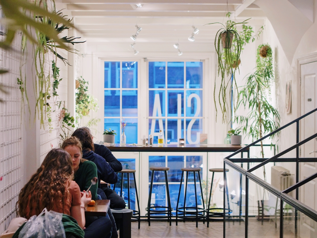 Table Sage's conscious dining values (sustainability)- sustainable Dutch salad bar, SLA, serves local food in green space with hanging plants
