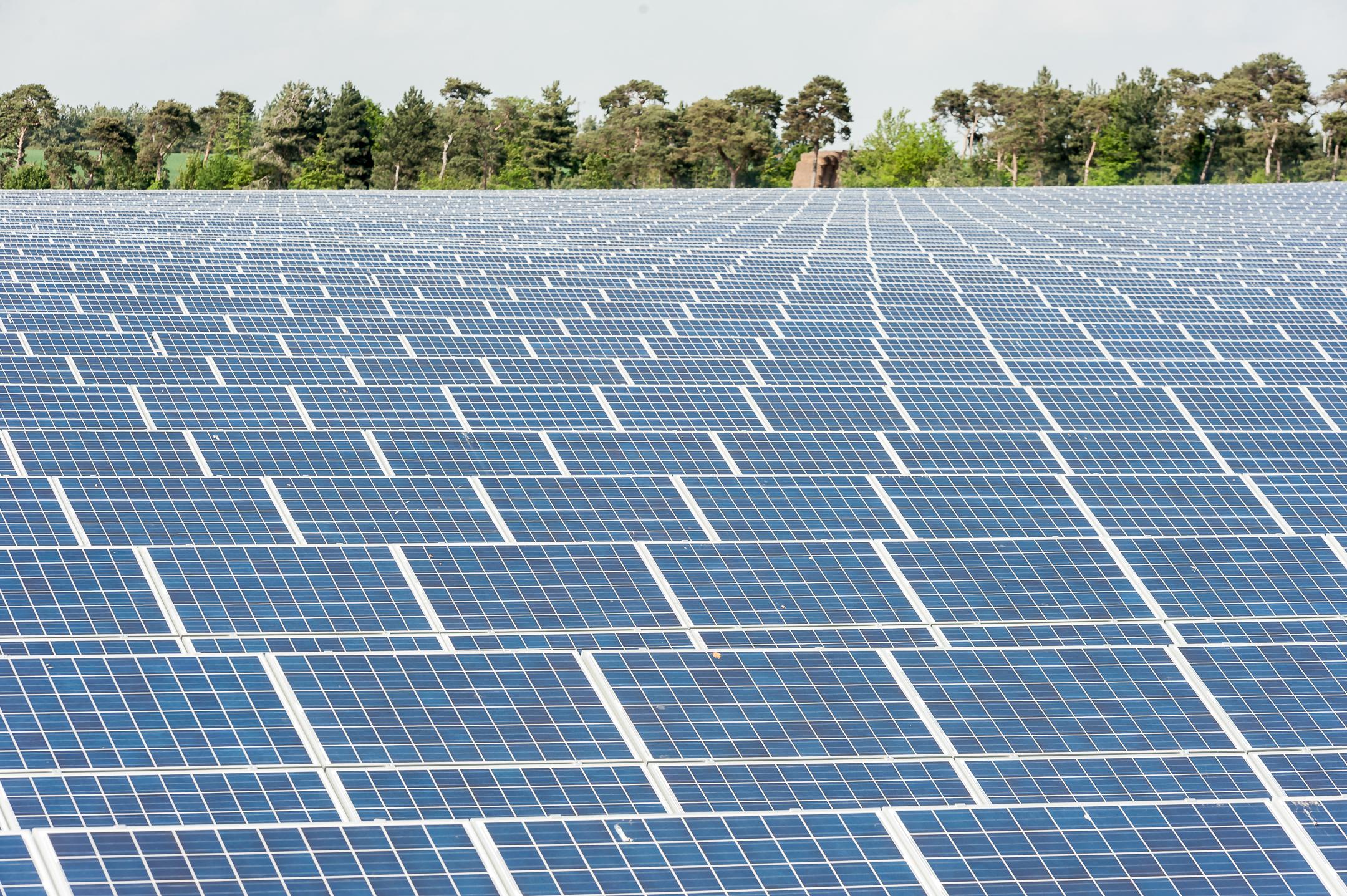 Bay Solar Farm