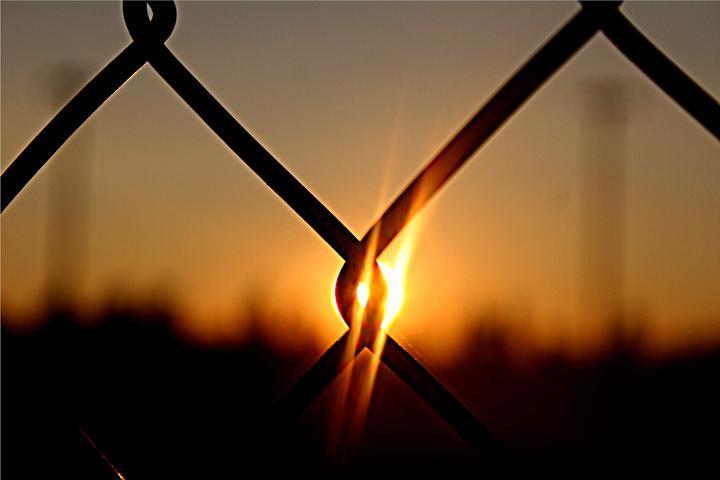Sun on fence