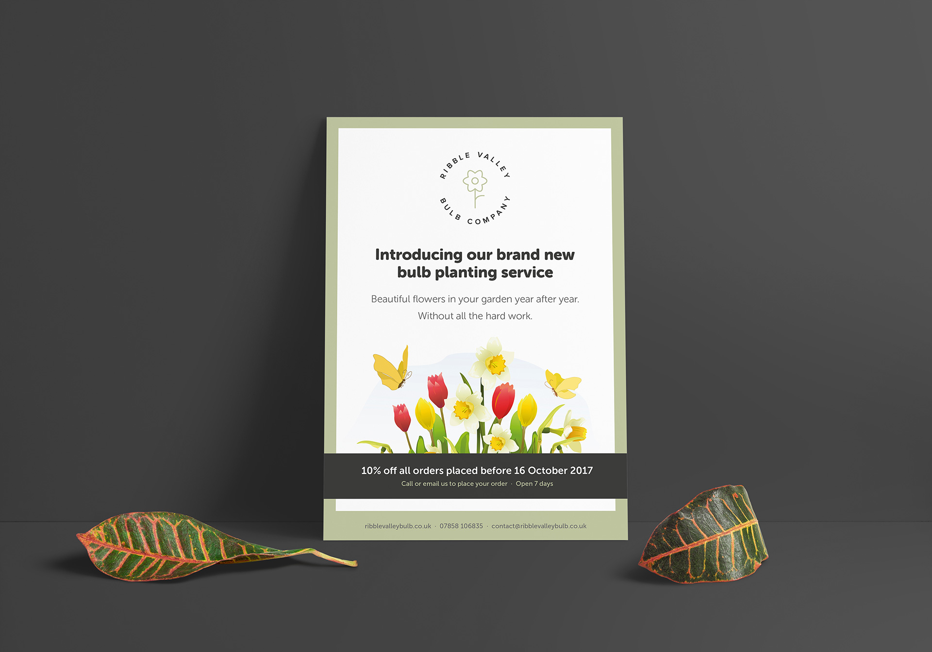 Advert design for Ribble Valley Bulb Company