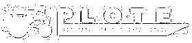 Logo plote inverse