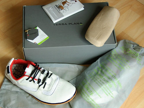 The Contents of a Terra Plana Aqua shoe box