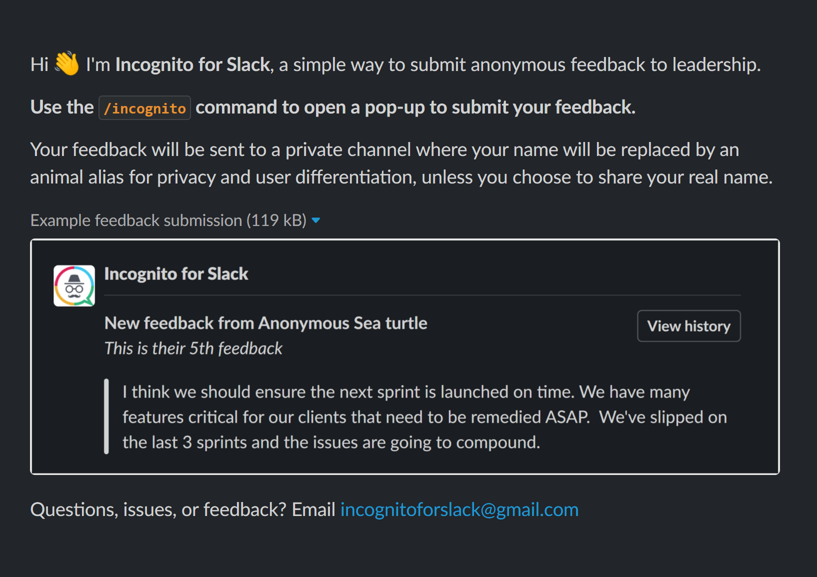 Example Slack intro image from Incognito for Slack.