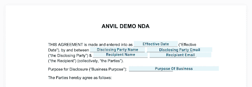 This is how our NDA file and fields will look to the signer.