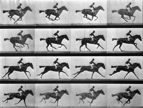 Grid of photographs of a mounted horse galloping