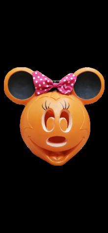 Minnie Mouse Pumpkin photo