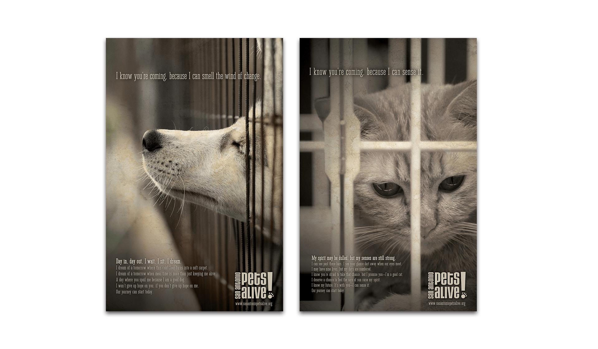 SAPA Posters 2