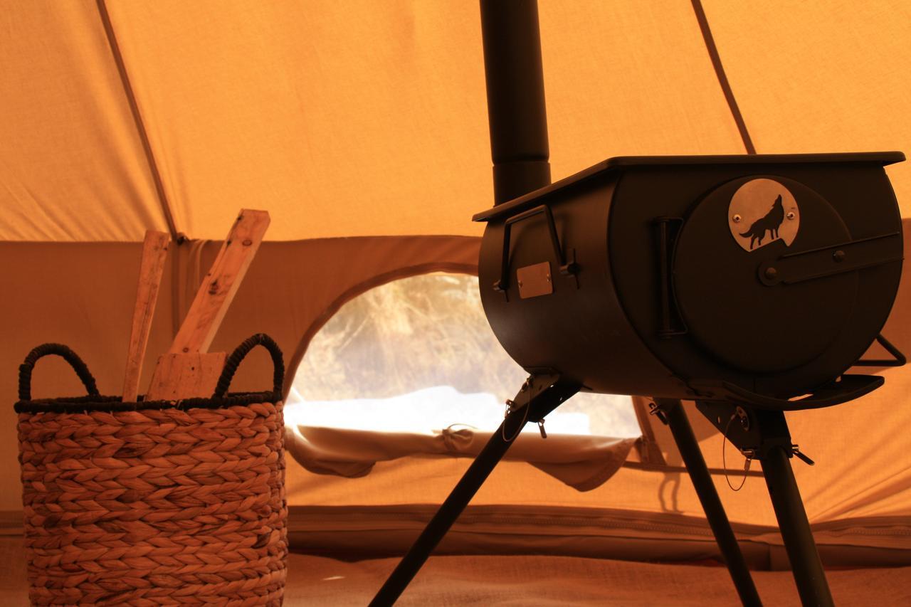 Cocoon oven vue2