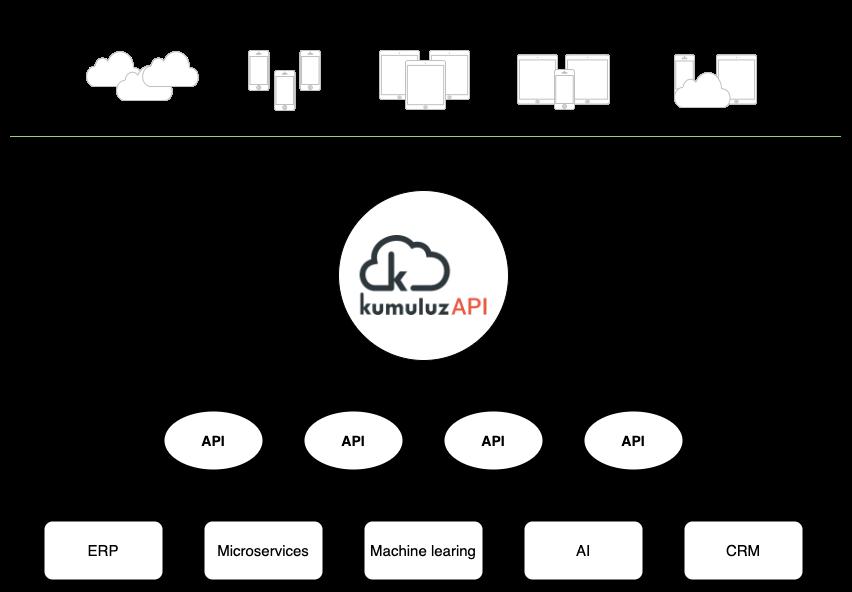 Ekosistem ordij za uspešno delovanje API ekonomije