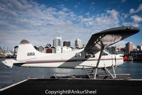 Auckland_Seaplanes-4