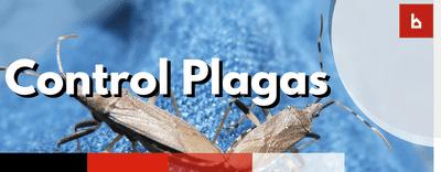 Garantía de Control de Plagas en los Seguros de Comunidades