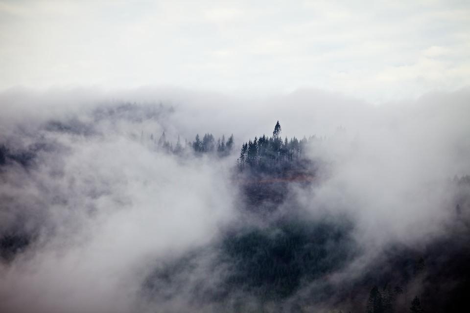 Fog Over the Oregon Coast Range