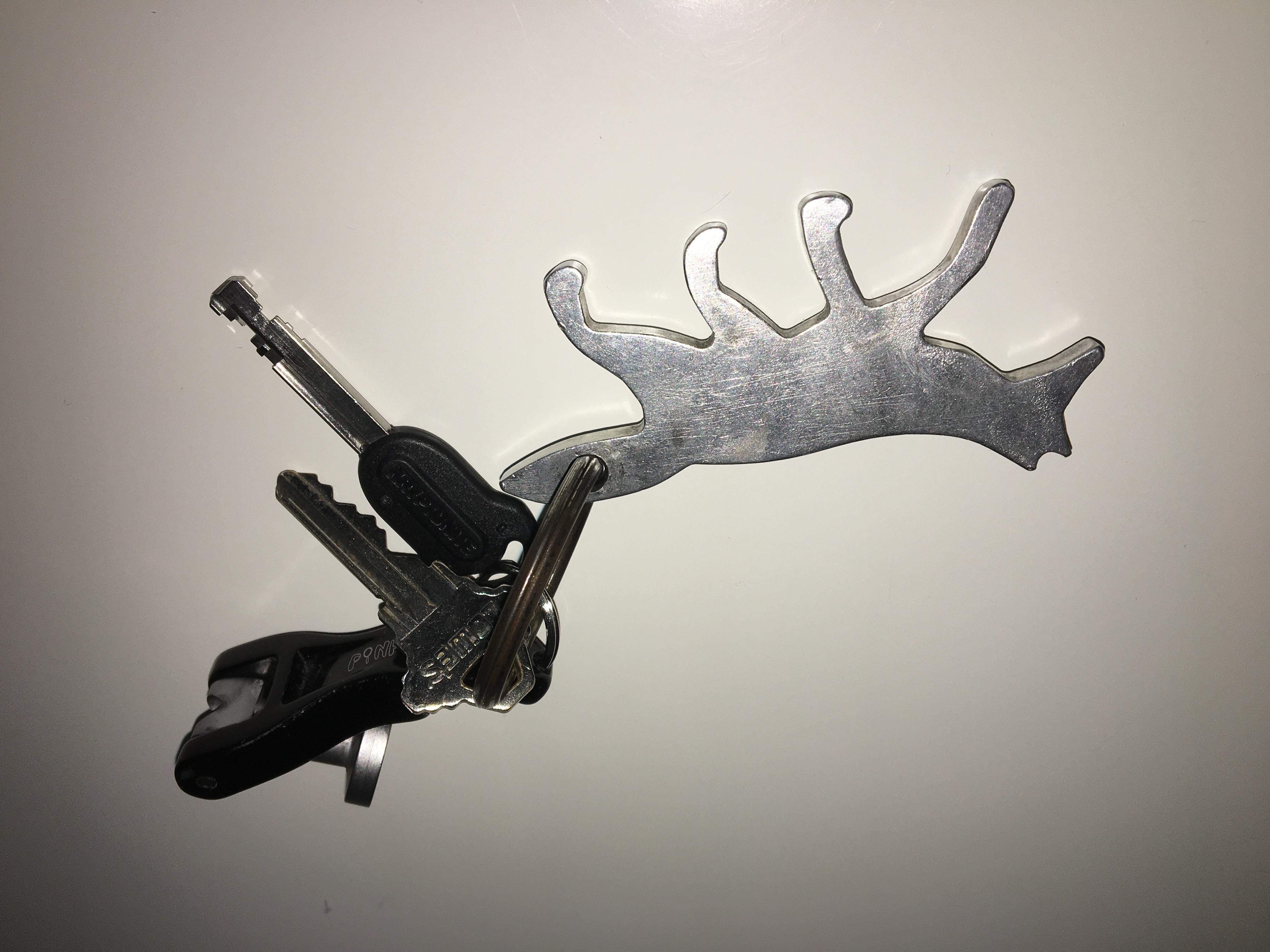 Fox buddy on my keychain