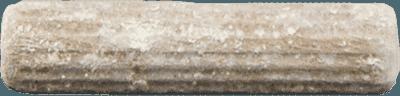 Mycelium plug   MycoLabs