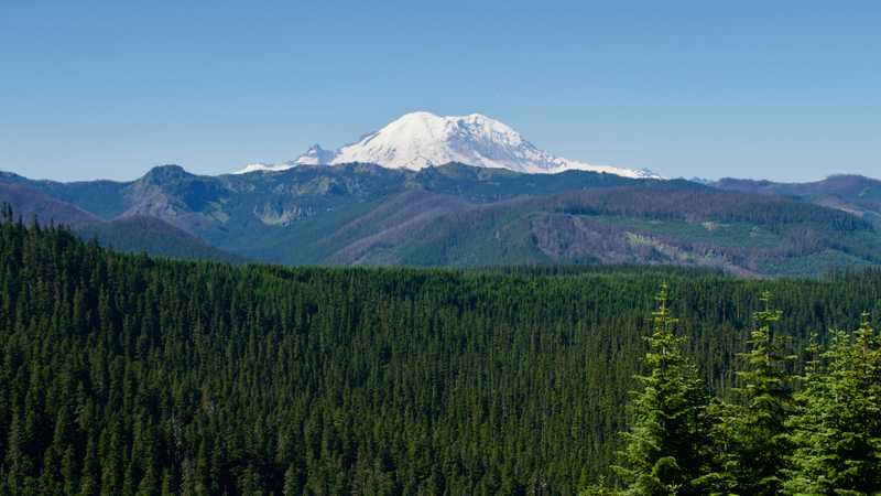 A view of Mt. Rainier from a ridge