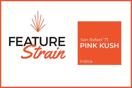 Pink Kush Strain