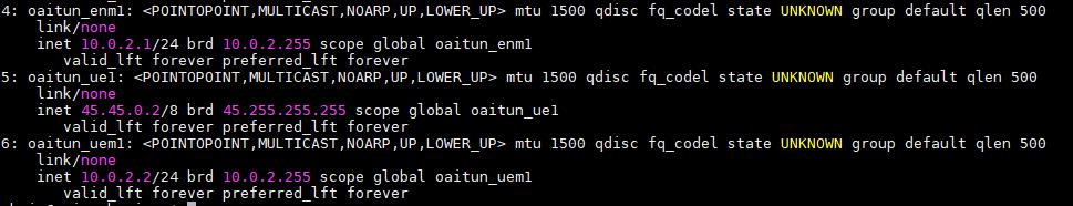 GNS3 network: OpenAirInterface