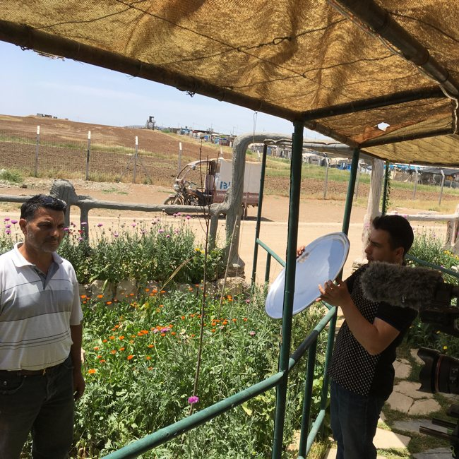 Agriculture in the context of forced displacement