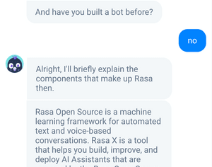 Sara helps users get started with Rasa and answers questions about building AI assistants