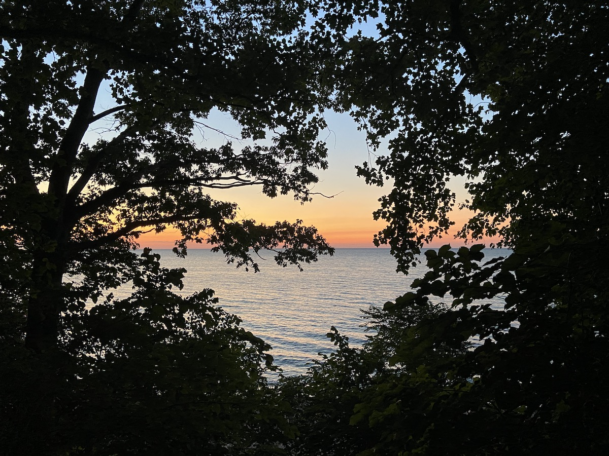 The view of a sunset over Lake Michigan seen through trees.