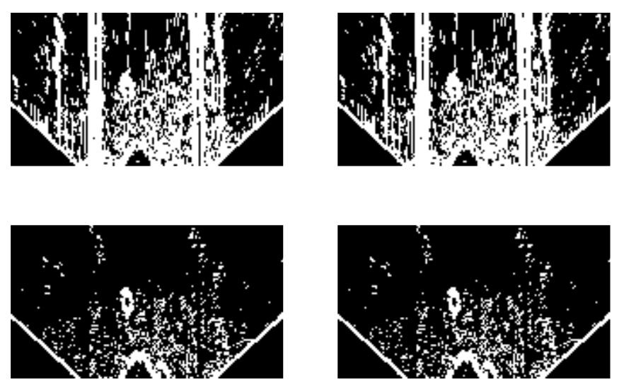 image-20200205194619798