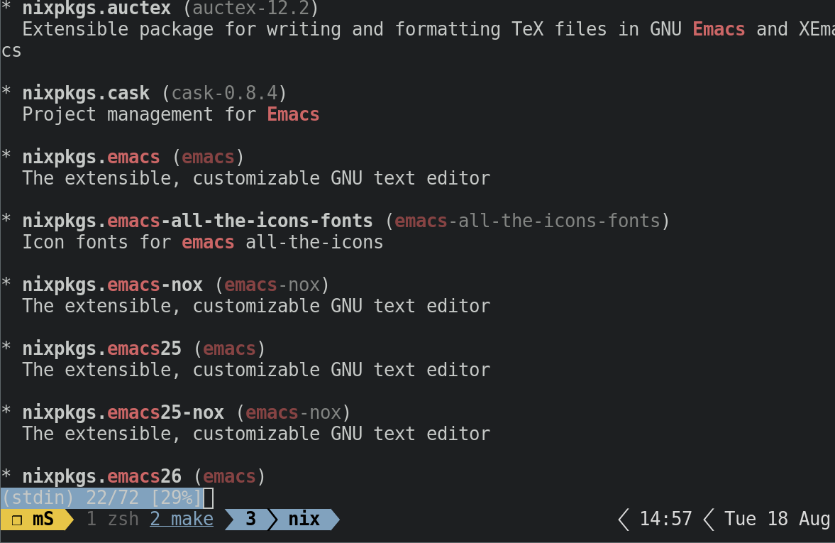 Figure 1: The nix search emacs output