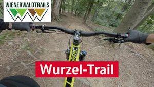 Wurzel Trail | Wienerwald Trails - Mountainbike Singletrail im Wienerwald