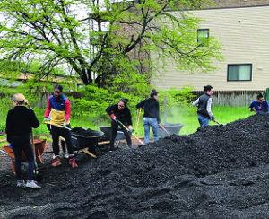Volunteers in Bronzeville