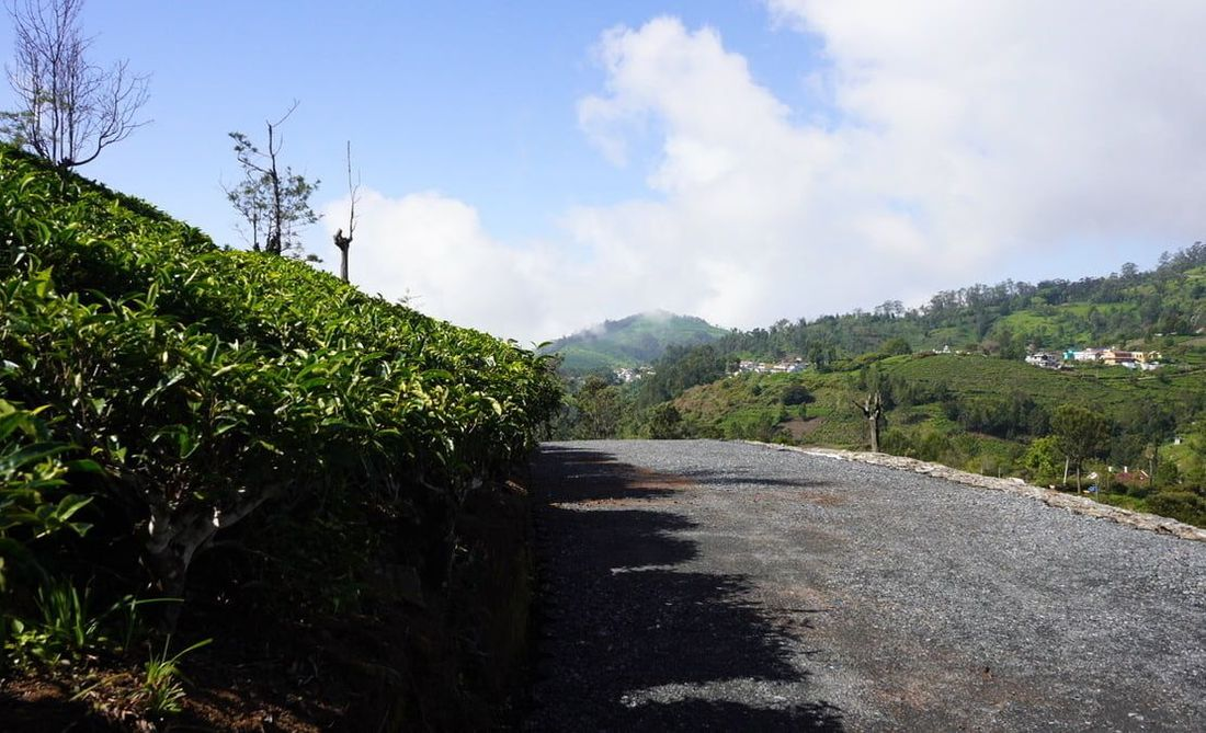 Road development and the Kodamalai village as seen from Sunset View