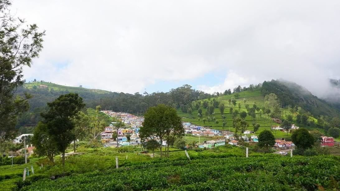 Sunset View | Prime Residential Plots for Sale in Coonoor