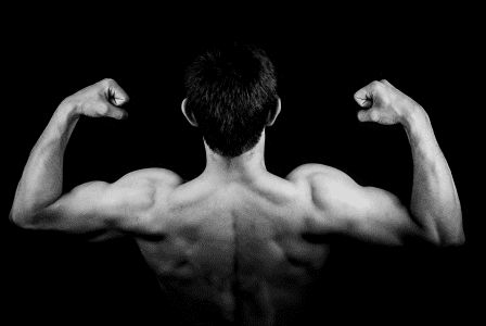 Fasting does not cause muscle breakdown