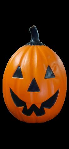 Flat Pumpkin photo