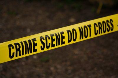 Crime Scene Consultation