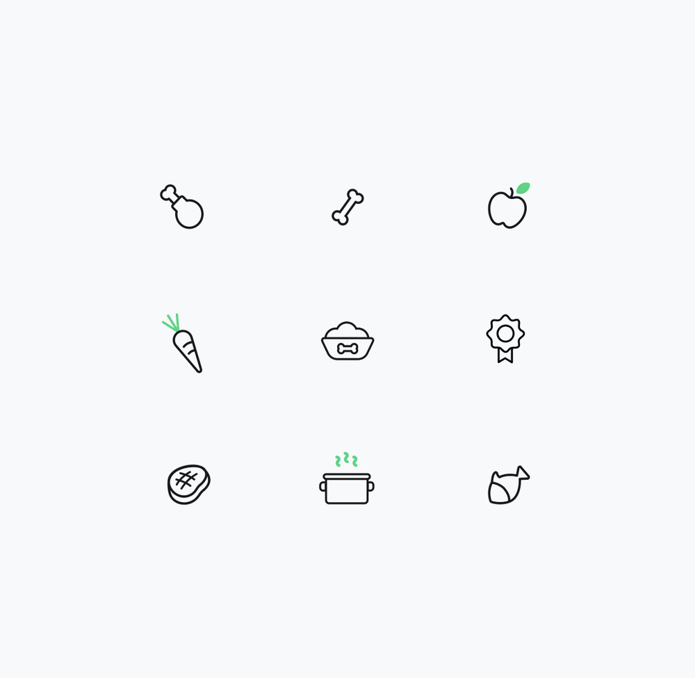 Some of the icons we created for the project