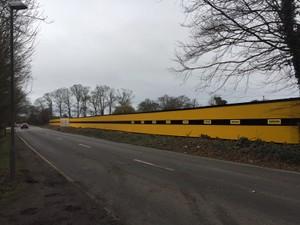 Long Run Timber Hoarding