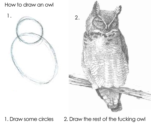 How to draw an owl. 1. Draw some circles. 2. Draw the rest of the fucking owl.