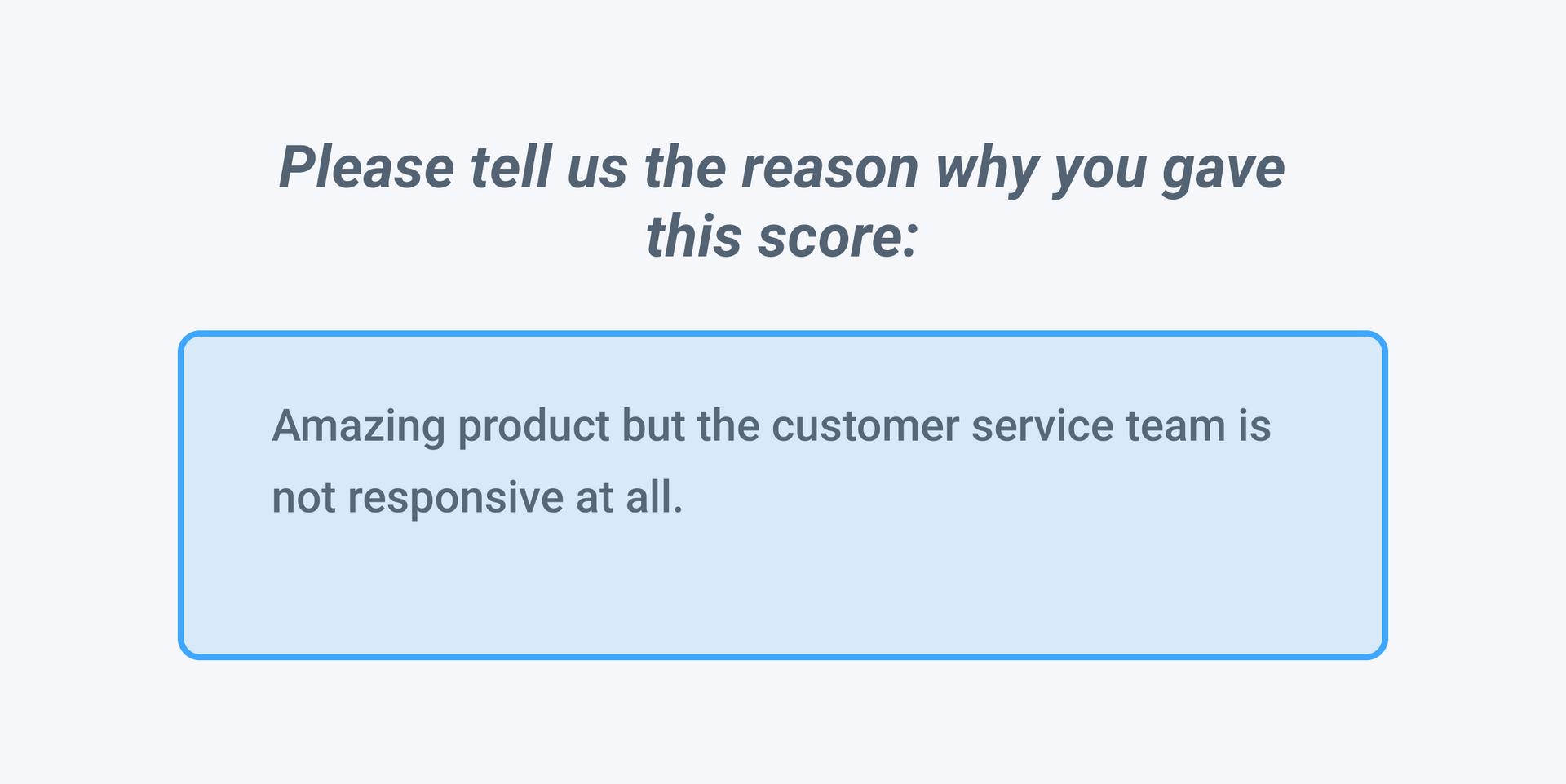 Net Promoter Score open ended question