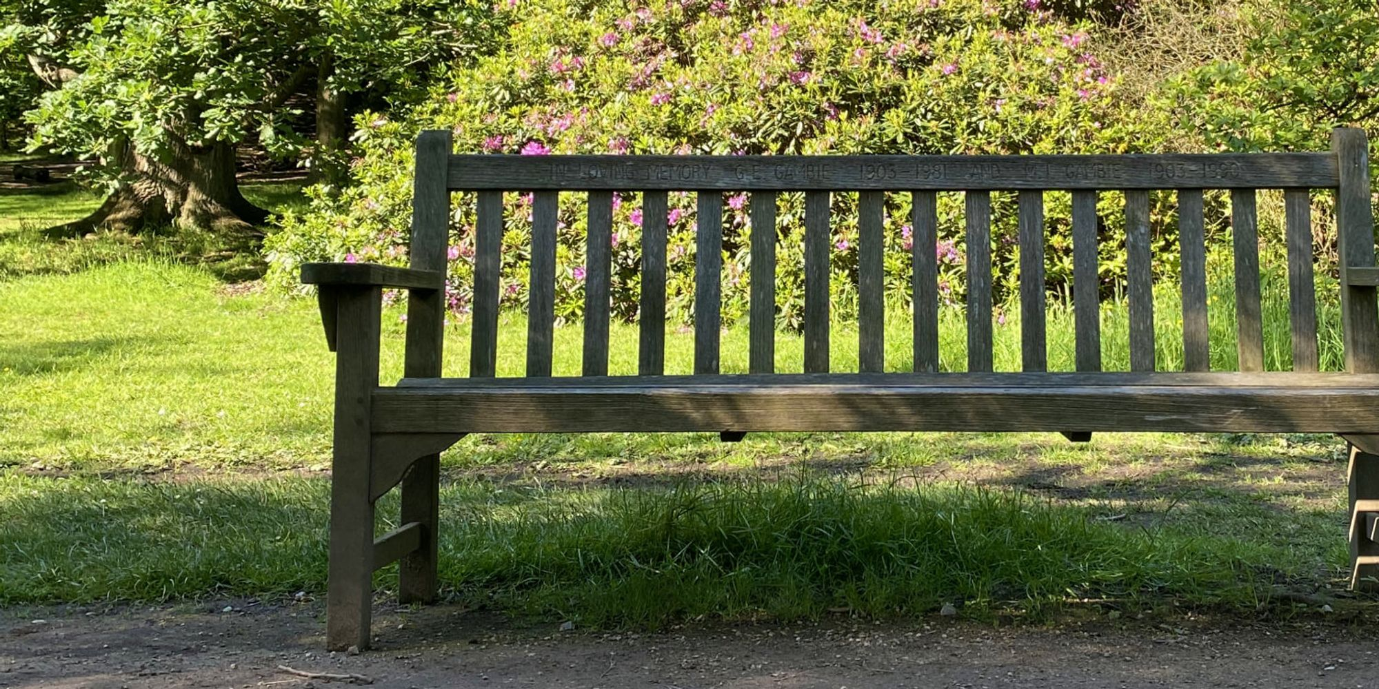 Bench at Golden Acre Park