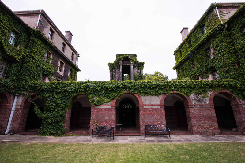 Brick archways covered in green ivy at Cape Town University campus