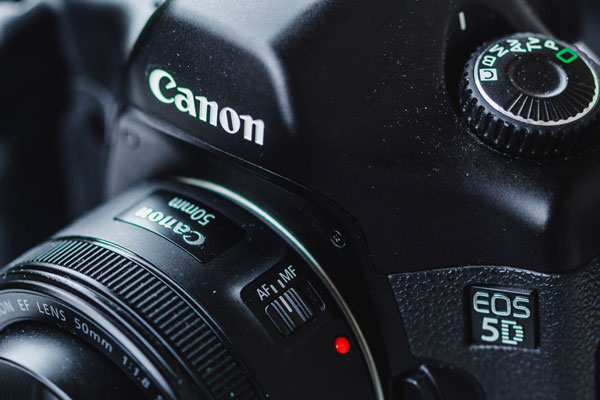 Beginner Cameras For Food Photography
