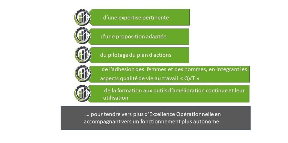 Supply Chain - Schéma expliquant par 5 lignes sur fond vert ce que ECEO propose de l'expertise, à la proposition avec pilotage d'actions et formation