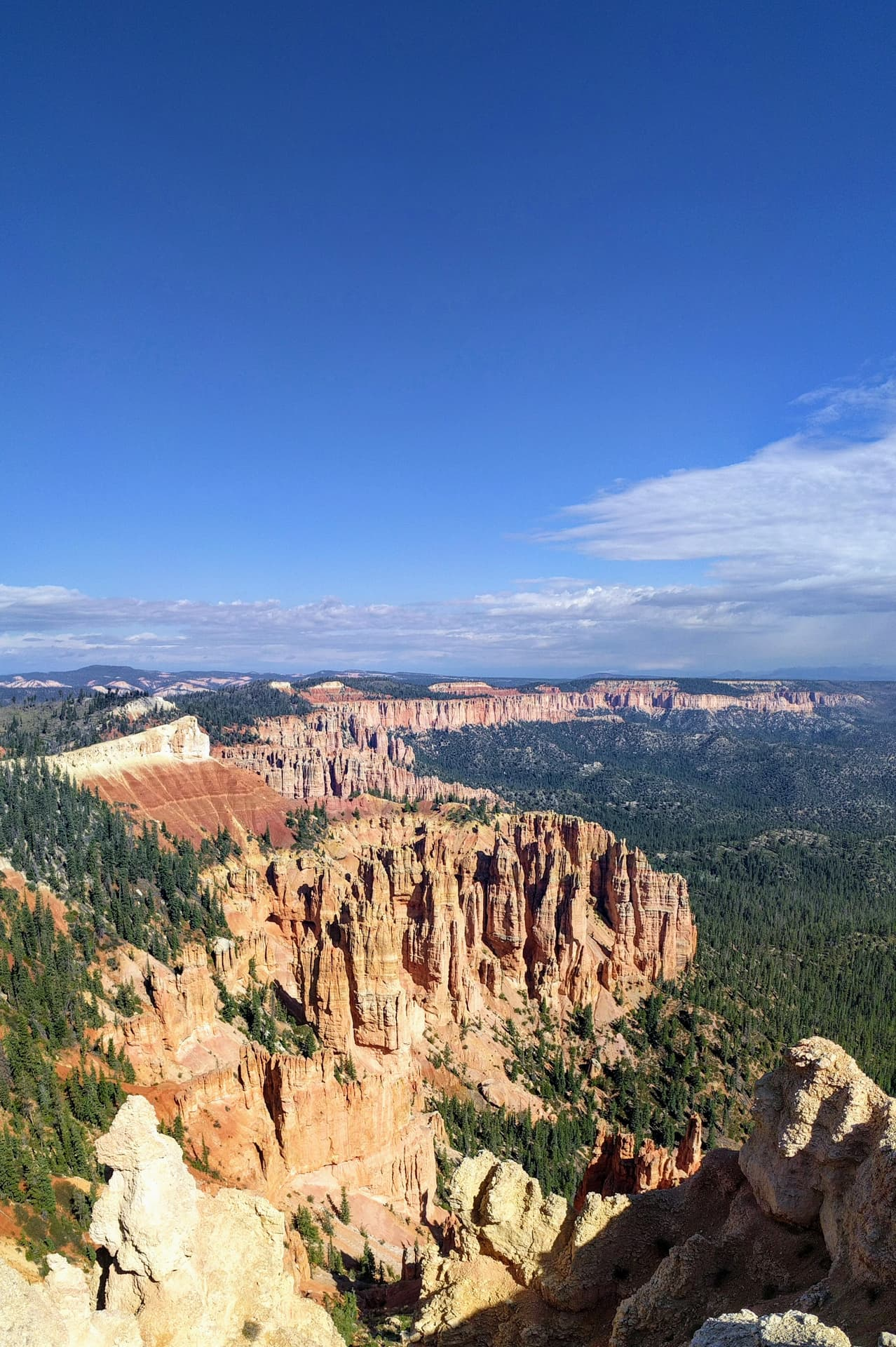 The undulating South Wall of Bryce Canyon. Red and white pillars of soft rock cluster together, eventually becoming the rim of the Canyon. The pillars stop abruptly, and are immediately replaced by a pine forest.