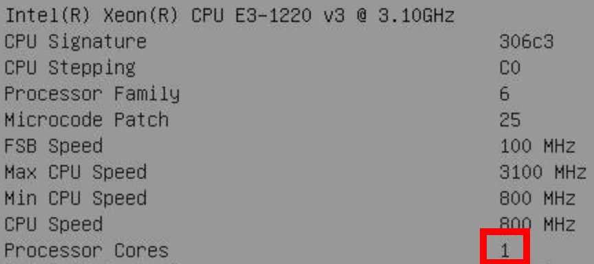 Screenshot of the BIOS, showing that the CPU has one core.