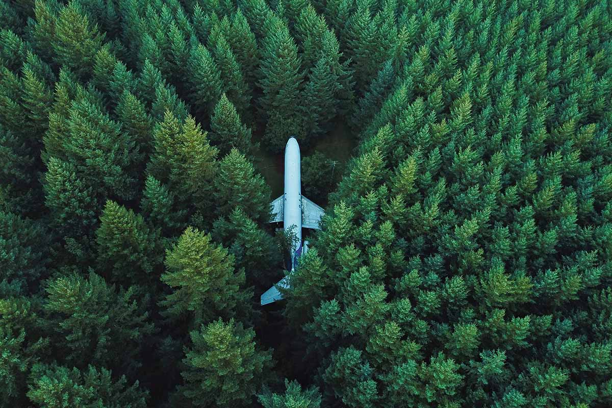 Airplane in a forest